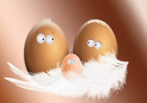 Read more about the article So pellst du dir leicht ein Ei !