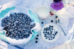 Heidelbeere- eine heimische Superfrucht