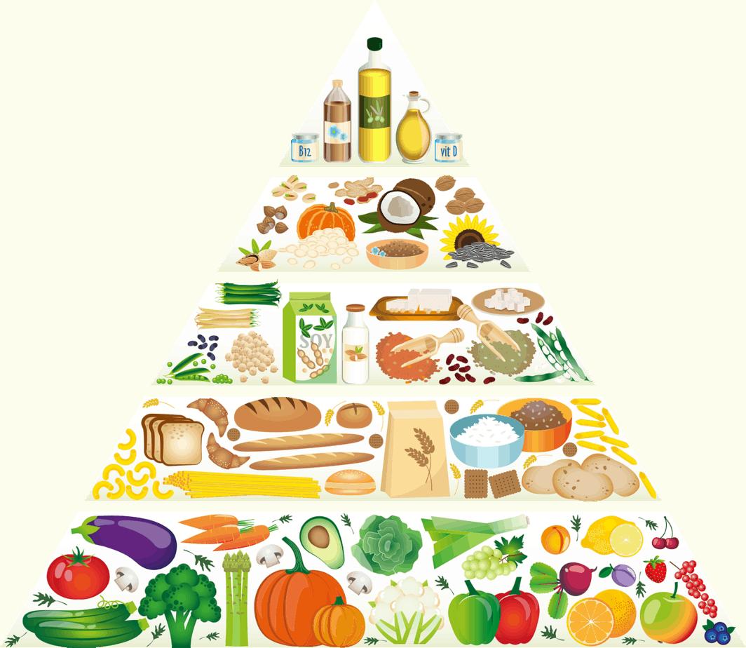 You are currently viewing Richtig oder falsch-Ernährungsempfehlungen im Wandel