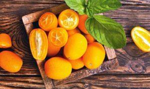 Read more about the article Kumquat Kompott
